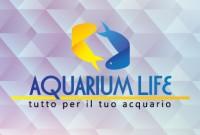 Acquari e Pesci Tropicali Aquarium Life - Messina