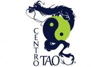 Centro Tao - Yoga, AcroYoga, Shiatsu, Reiki - Messina