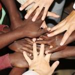 Volontariato e No Profit