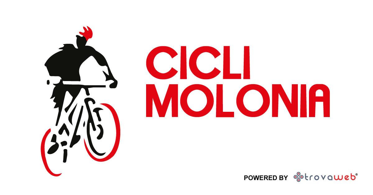 Biciclette Vendita e Riparazioni Cicli Molonia - Messina