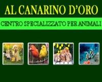 Al Canarino D'Oro - Negozio Animali e Accessori a Messina