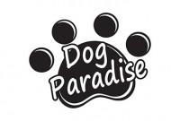 Parco Giochi e Asilo per Cani Dog Paradise - Palermo