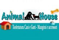 Pet Shop Animal House - Cefalù