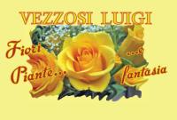 Vezzosi Fiori e Piante - Messina